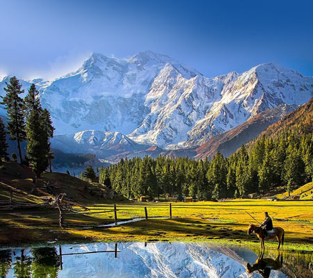 Fairy Meadows and Gondogoro La